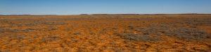 Western Queensland Desert
